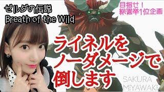 今回は、ゼルダの伝説BREATH OF THE WILDというゲームに挑戦! 任天堂Sw...