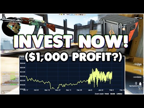 Why YOU Should INVEST NOW In The BRAVO CASE!