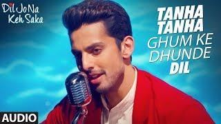 Tanha Tanha Audio Song | Dil Jo Na Keh Saka | Jubin Nautiyal | Himansh Kohli Priya Banerjee