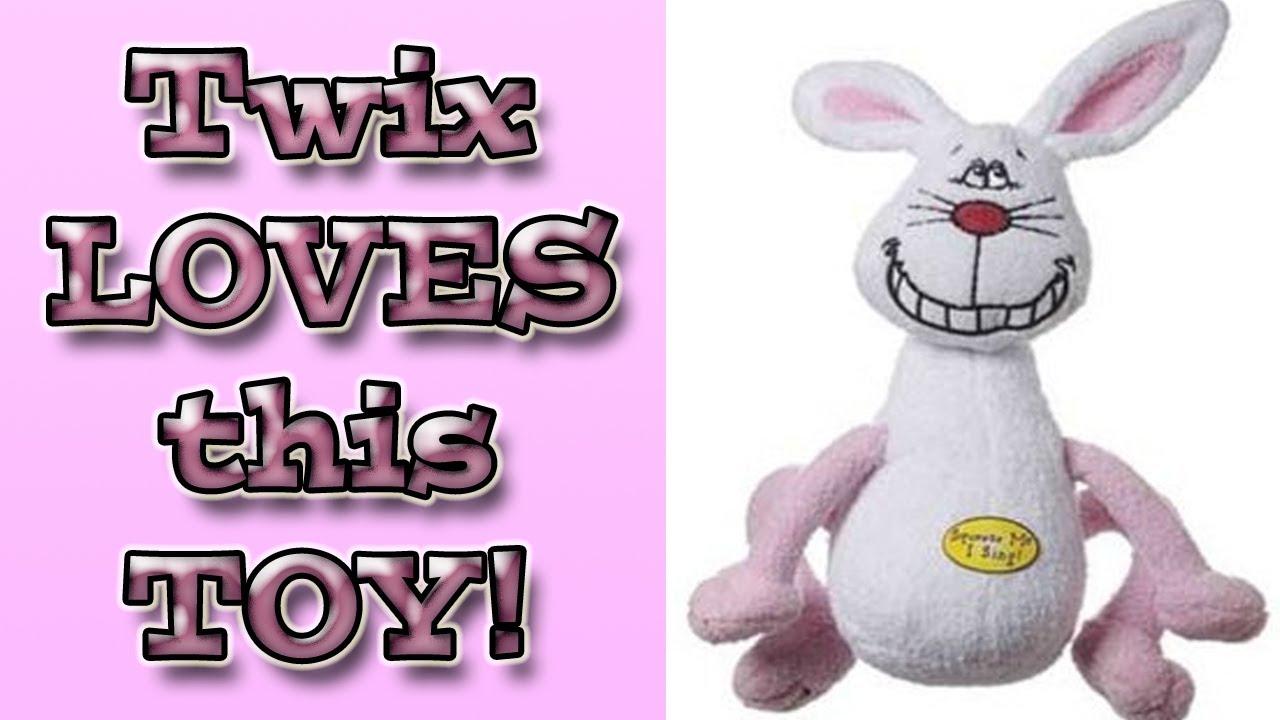 deedle dude rabbit twix