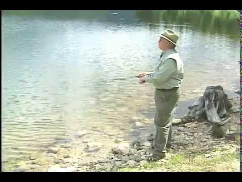 Joe Wright Reservoir Colorado Grayling Shore fishing