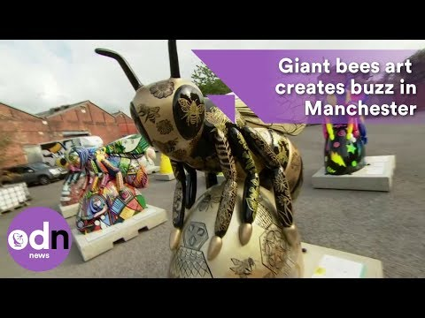 Giant bees art exhibition creates buzz in Manchester