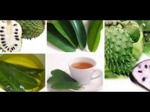 beneficios de la hoja de guanabana para la diabetes