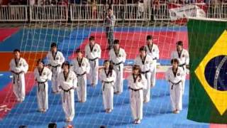 Korean Tigers - Brazilian Festival 2010