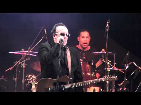 ELVIS COSTELLO, Tears, tears and more tears, HD