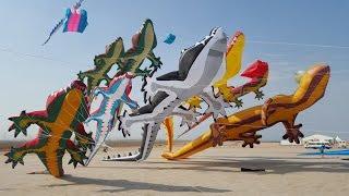 Al Farsi International Kite Festival 2016. Kuwait