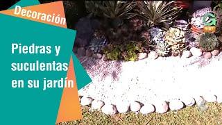 Combine piedras y suculentas en su jardín