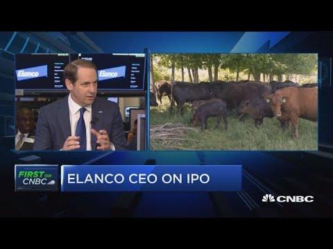 Elanco CEO on IPO, animal health focus