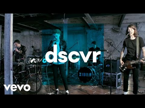 Zibra - Great White Shark - Vevo dscvr (Live)
