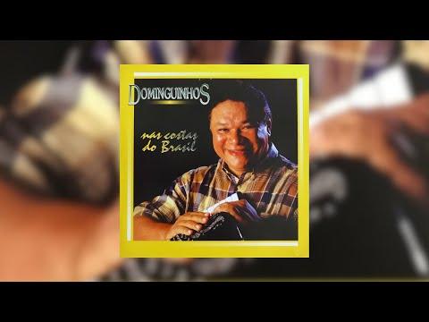 Dominguinhos - Nas Costas do Brasil (Álbum Completo)