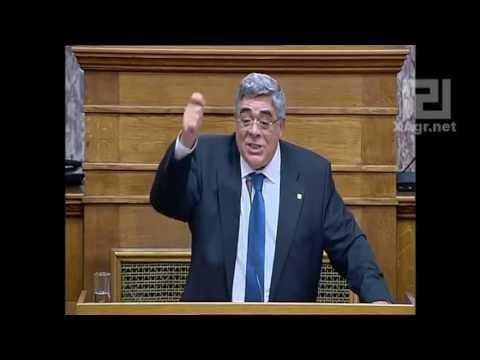 Χρυσή Αυγή: Ένας χρόνος στη Βουλή ενάντια στο σάπιο κατεστημένο