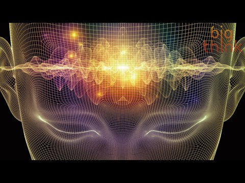 The Neuroelectricity of Flow States, with Steven Kotler