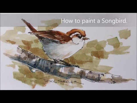 How to paint a bird, sparrow demonstration. A fun line and wash watercolor