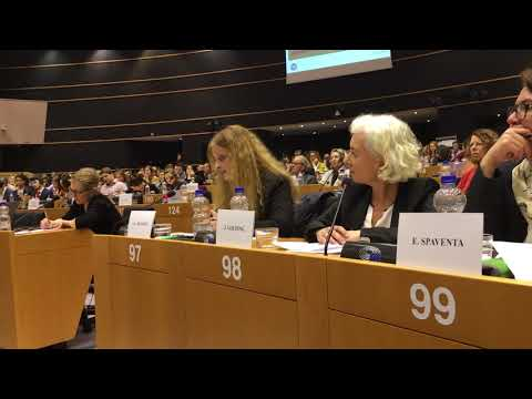 the3million talking about EU citizens' rights in the European Parliament