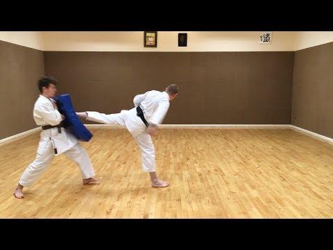 Ushiro-geri (Back kick)
