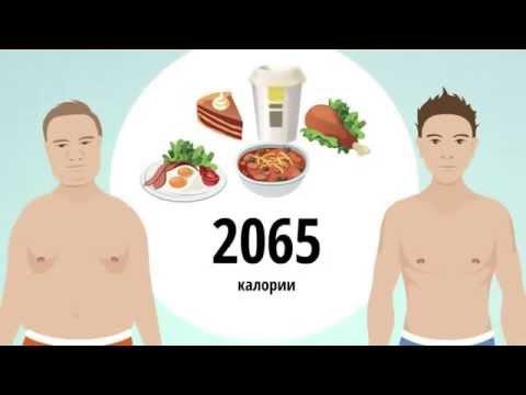 Бодибилдинг, фитнес, питание, диета и Юрий Спасокукоцкий
