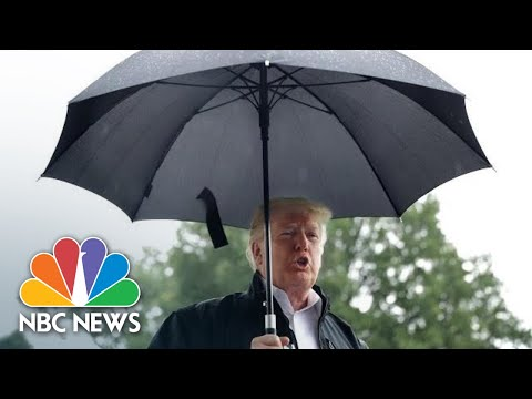 Donald Trump Says 'Who Cares' After Warren DNA Test Proves Native American Ancestry | NBC News
