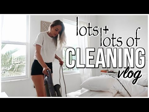 Cleaning Vlog  Sunday Speed Cleaning  Renee Amberg