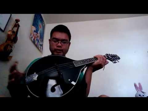 Rogue instruments mandolin review
