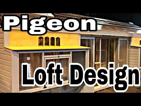 Best Pigeon Loft   Pigeon Loft Design   Racing Pigeon Loft   Dream Loft   Pigeon Loft