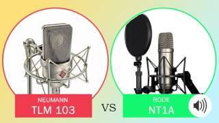 Neumann TLM 103 vs Rode NT1A