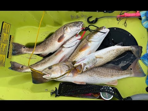 BACK IN ROCKPORT TEXAS | Trying New Baits Fishing The Grass Lines