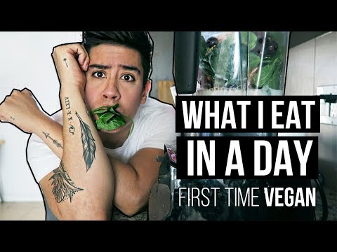 WHAT I EAT IN A DAY: VEGAN  *EASY HEALTHY MEALS*   | JAIRWOO