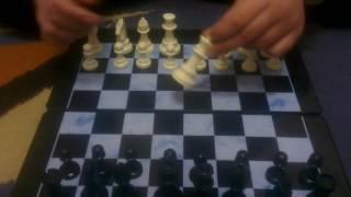 обучение новичков в шахматы правила как играть