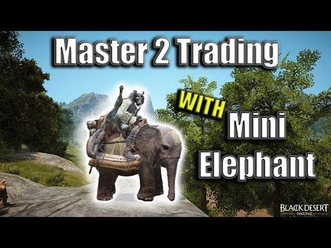Master 2 Trading with Mini Elephant