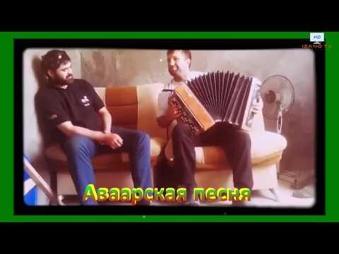 АВАРСКИЕ ПЕСНИ НА БАЯНЕ СКАЧАТЬ БЕСПЛАТНО