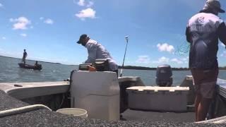 Prawning Redland Bay 04032016