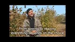 Growing truffles in Serbia (Domacin.rs).flv