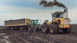 ►EXTREME Conditions!◄ Sugar Beet Transport - 11X John Deere + Claas + Ropa + Rába Steiger