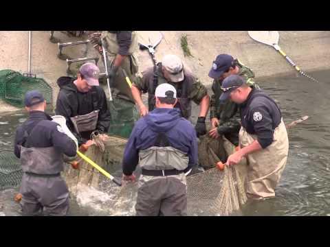 Antero Reservoir Fishing