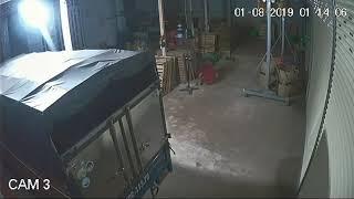 Trộm sầu riêng tại xã Tân bình tp tây ninh