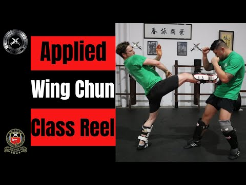 Applied Wing Chun Techniques - Ultimate Martial Arts Academy