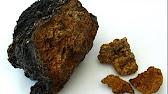 ᐉᐉᐉ 100% ягоды грибы куплю оптом завод. Чага приём цена кг лисички сморчки продам гриб ежовик   красноярск абакан томск новосибирск  .
