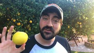Liberal Redneck - Thanks for Nothin