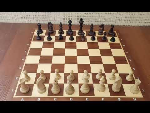 Самый опасный дебют за белых! Одна из лучших комбинаций в истории! Шахматы дебюты