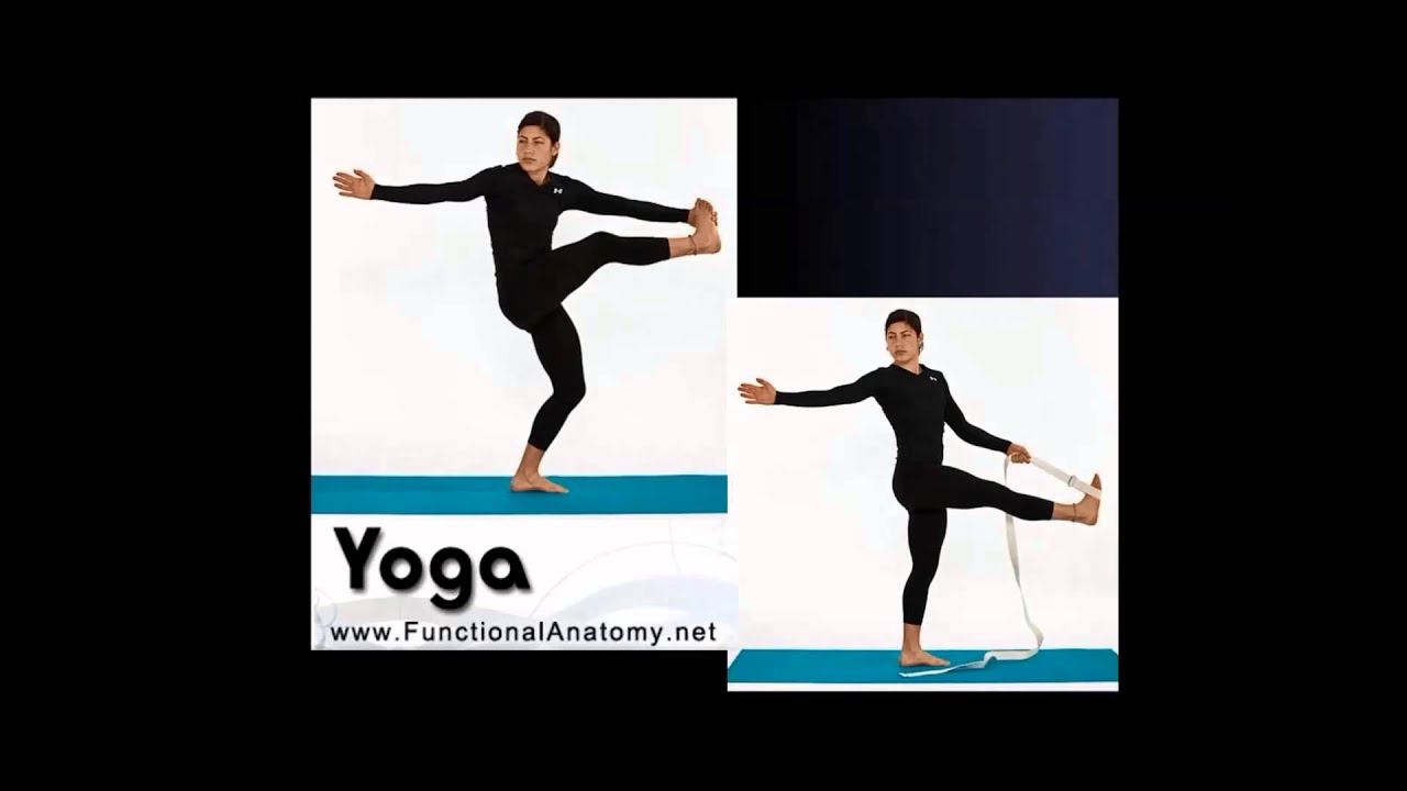 Position before range - Adaptations in Yoga Therapy practice - Dr ...