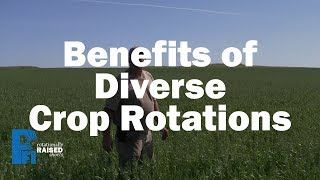 Benefits of Diverse Crop Rotations