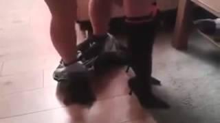 Meeting with a stranger   Быстрый секс с незнакомкой