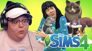 CRAZY CAT LADY   The Sims 4