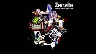 Stereotyp - Fling Style (feat. St Paul Hilair - Zenzile Mix) (2005) [Wagram]