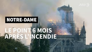 Notre-Dame : 6 mois après, où en sommes-nous ? | AFP Photo
