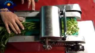 Mini vegetable cutter cutting celery