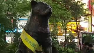 Family Destinations in Tokyo