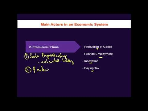 1.9.2 Main Actors in an Economic System - Producers / Firms