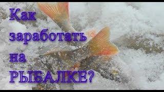 КАК ЗАРАБОТАТЬ НА РЫБАЛКЕ? Снасти окупятся!!! - Болен Рыбалкой №593