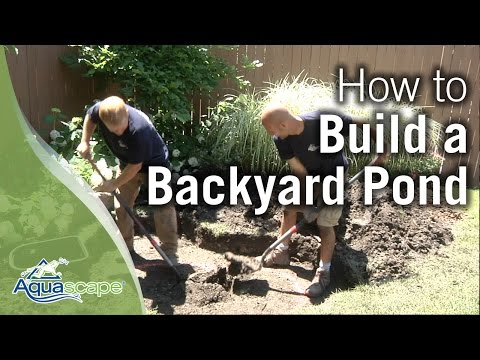 How To Build a Backyard Pond<a href='/yt-w/q5rpZaPYTUI/how-to-build-a-backyard-pond.html' target='_blank' title='Play' onclick='reloadPage();'>   <span class='button' style='color: #fff'> Watch Video</a></span>
